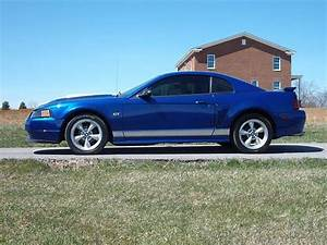 Buy used 2003 Ford Mustang GT Coupe 2-Door 4.6L in Stanford, Kentucky, United States