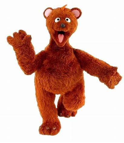 Bear Muppet Characters Wiki Sesame Street Elmo
