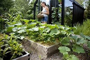 Welche Pflanzen Passen Gut Zu Hortensien : tipps f r die bepflanzung von hochbeet welche pflanzen ~ Lizthompson.info Haus und Dekorationen
