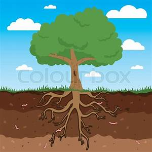 Tree With Roots And Leafs  Above And Under Earth Tree