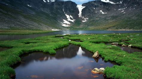 Download Live Nature Wallpaper Gallery