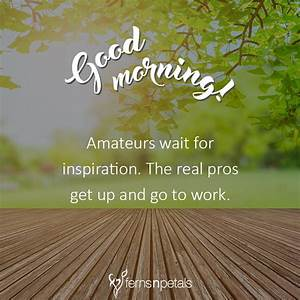 30+ Good Morning Quotes, Wishes, Messages Images 2019 - Ferns N Petals