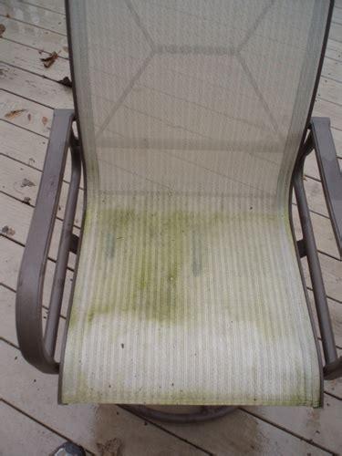 clean  remove mold mildew  outdoor patio