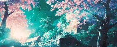 Anime Aesthetic Wallpapers Desktop Japan Sakura Impact
