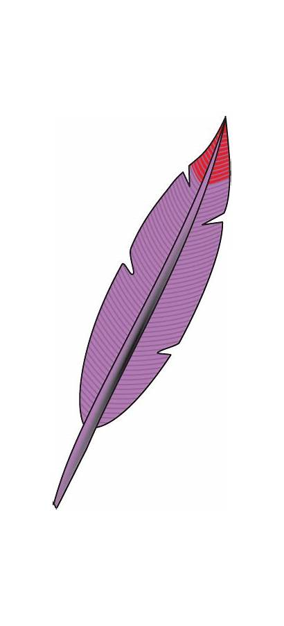 Feather Clipart Indian Clip Feathers Cliparts Pink