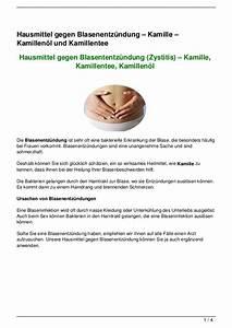 Hausmittel Gegen Mäuse Und Ratten : hausmittel gegen blasenentz ndung kamille kamillen l ~ Michelbontemps.com Haus und Dekorationen