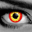 Red Wolf FX Contact Lenses - Gothika - Pair - Monster ...