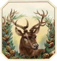 free vintage christmas image deer the graphics fairy