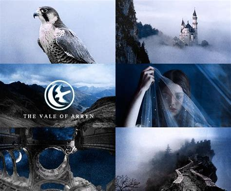 106 Best Images About House Arryn **got** On Pinterest