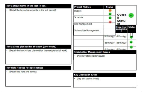 project status template status report templates 12 free word documents free premium templates