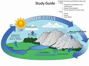 Label Water Cycle Diagram, Label, Free Engine Image For ...