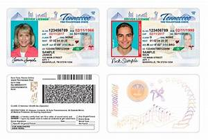 image gallery tennessee license With tennessee drivers license template
