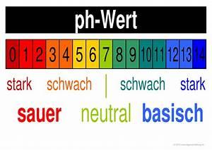 Ph Wert Berechnen Aufgaben : chemie lernplakate wissensposter ph wert 8500 bungen arbeitsbl tter r tsel quiz tests ~ Themetempest.com Abrechnung
