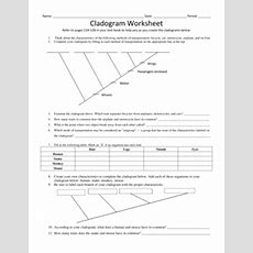 Fillable Online Cladogram Worksheet  Cloudfrontnet Fax Email Print Pdffiller