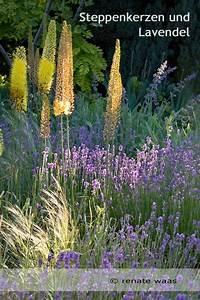 Schöne Gärten Anlegen : ber ideen zu blumenbeet anlegen auf pinterest blumenbeet gestalten m cken absto en ~ Markanthonyermac.com Haus und Dekorationen