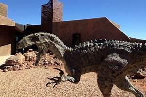 Outback Qld dinosaur museum - ABC News (Australian ...