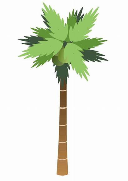 Palm Tree Trunk Stepped Trees Plants Wpclipart