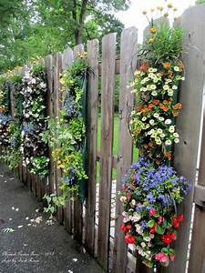 Eye-catching, Lovely, Garden, Fences, With, Flowers