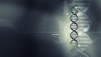 Dna Structure Mystery