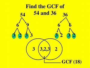 Ppt - Greatest Common Factor  Gcf  Powerpoint Presentation