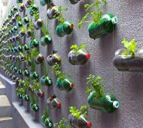 ide kreatif buat kebun vertikal  barang bekas zona
