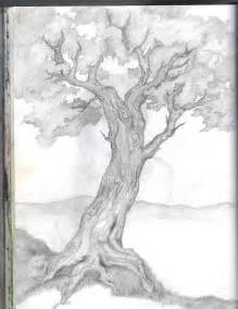 Beautiful Tree Sketches