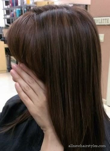 light brown hair with lowlights lowlights in light brown hair allnewhairstyles