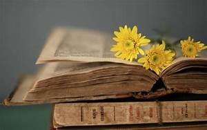 Pin Flowers Books Hd Wallpaper 1065721 on Pinterest