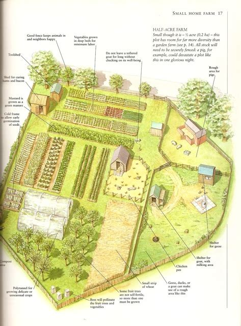 homestead garden plan reading up on self sufficiency ithaca farm