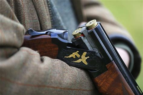 A driven pheasant hunt in high style   Journey of the
