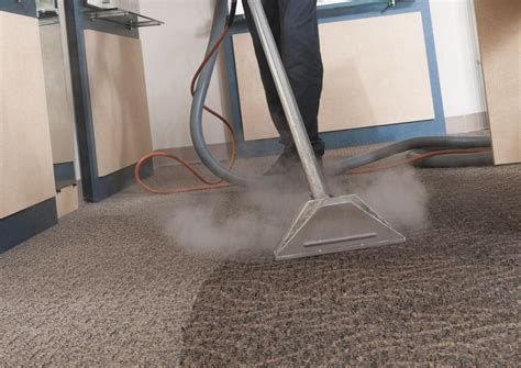 upholstery steam cleaner carpet cleaning vs steam cleaning