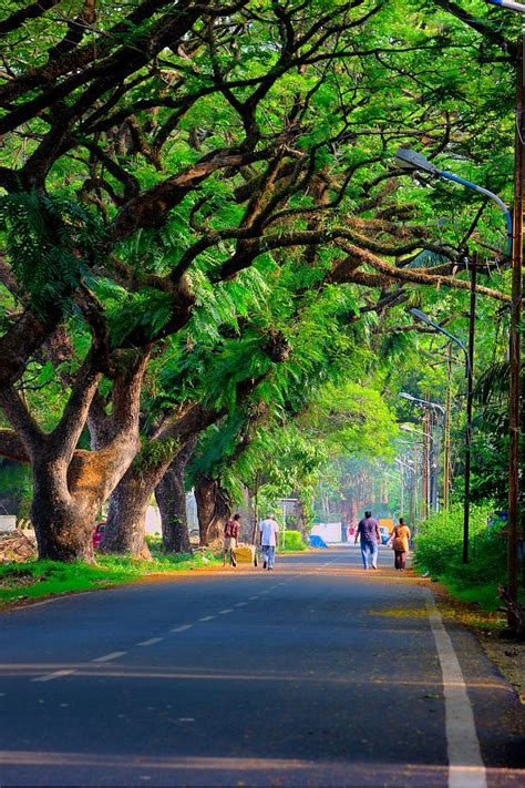 fort kochi  ershad ashraf  px road photo