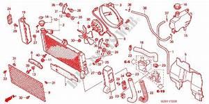 Radiator For Honda Valkyrie 1500 1998   Honda Motorcycles