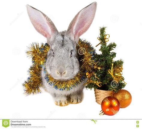 gray rabbit  christmas decorations royalty  stock