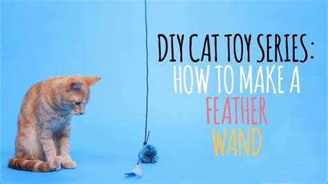 diy cat toys     feather wand youtube