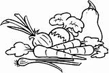 Vegetables Coloring Pages Printable Clipart خضار Fruit sketch template