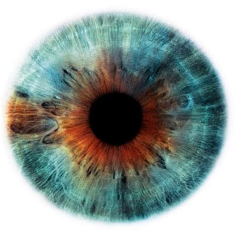 jean gabin tu as de beaux yeux plan 232 te beaut 233 t as de beaux yeux tu sais