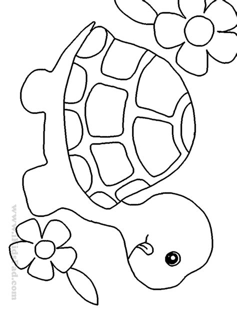 The Gallery For > Easy Drawings For Kids About Birds. Trouble Ticket Management Blue Cross Alberta. Online Degree Human Resources. Internet Providers In Tampa Florida. Liposuction In Orlando Comcast Springfield Vt. Metal Forming Software Loan Reduction Program. How Many Businesses Use Social Media. Net Framework Developer How To Animate A Flag. Breast Reconstruction Implants