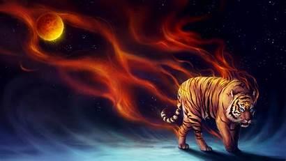 Tiger Power Tigre Poderes Fondos Wallpapers Pantalla