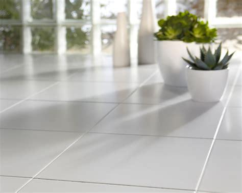 best pet vacuum get ceramic floor tile surfaces clean home