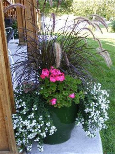 Sunnyside Deck Wash Ingredients by 1000 Images About Backyard On Tree Rings