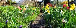 Hilfe Im Garten : ich habe einen kleingarten datschlandia garten teilen ~ Lizthompson.info Haus und Dekorationen