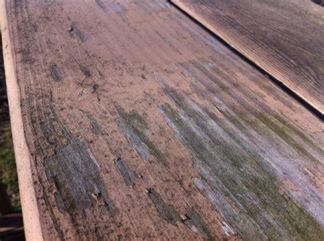 stolarija vlaga kao uzrok propadanja bojenih drvenih