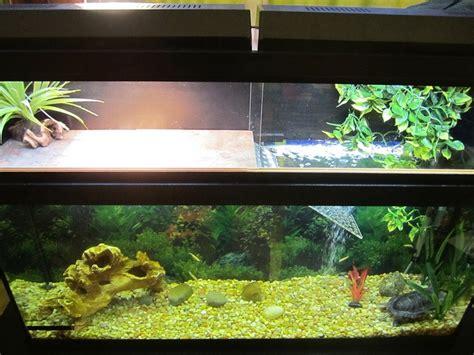 eared slider tank img 0027 by grayfamilia via flickr red ear slider pinterest turtle