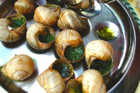 cuisine escargots 13 things i 39 ve learned about food in
