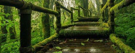 ธรรมชาติ, ธรรมชาติ และ ธรรมชาติ