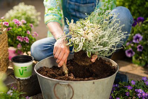 Gartenarbeit Im Oktober  Plant Happy®