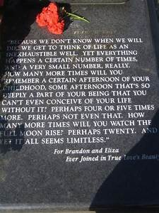 Brandon Lee Quo... Brandon Quotes
