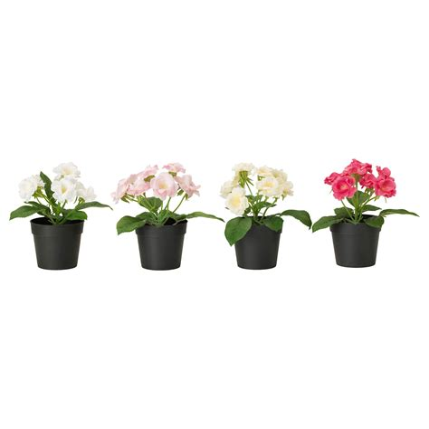 fejka artificial potted plant assorted colours 9 cm ikea