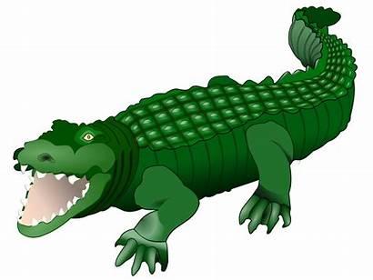 Clipart Crocodile Animals Clipground Cliparts